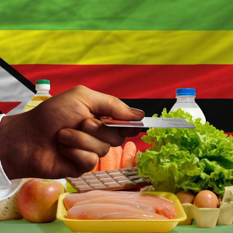 Zimbabweans Use BTC to Pay for Food Hampers Amid Foreign Currency Crisis
