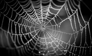 This Dark Web Market is Planning to Add Support for Ethereum
