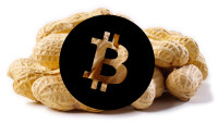 Recurring Payments Button for Bitcoin 'Peanuts' Unveiled