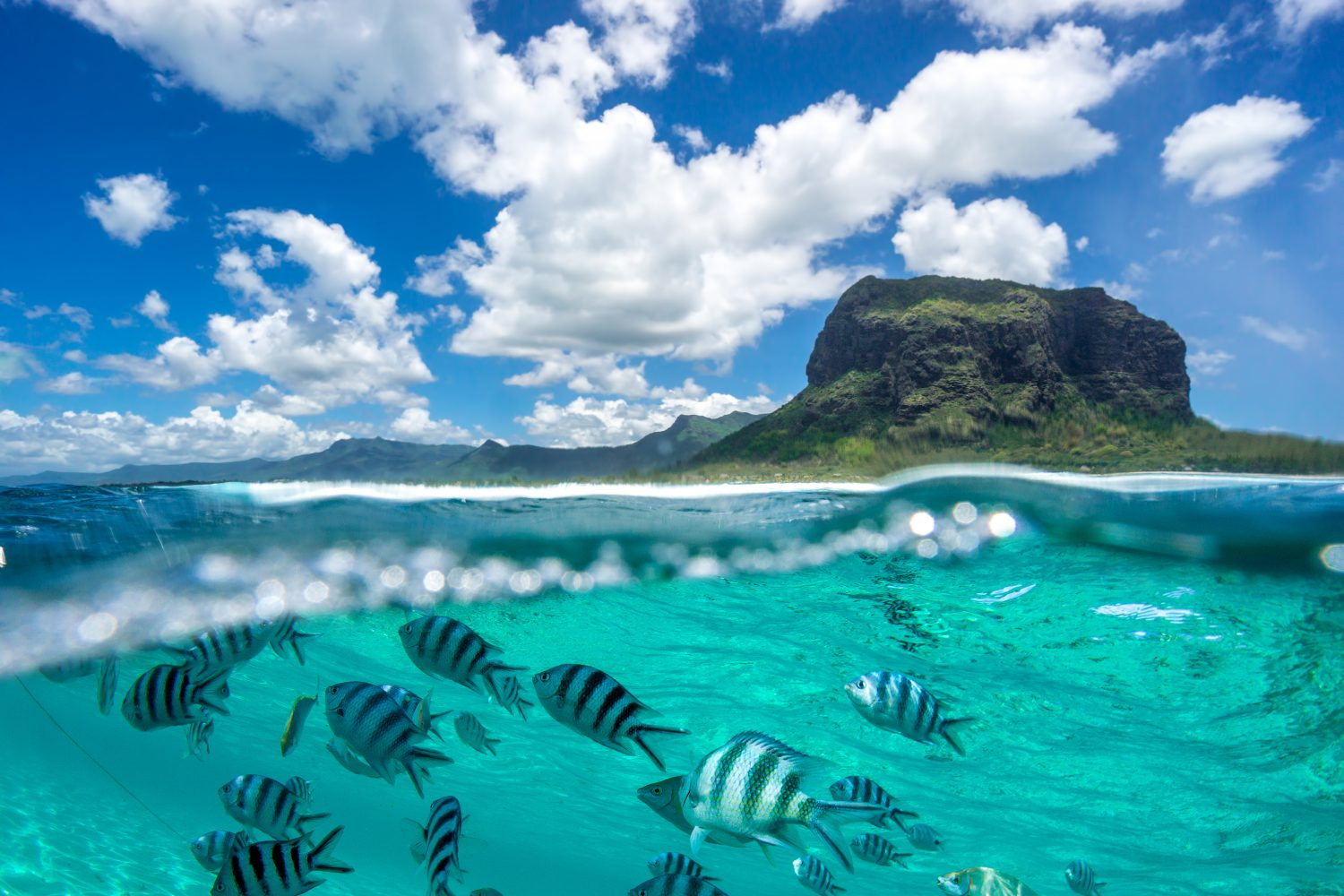 Mauritius: The Tropical Paradise Looking to Become a Blockchain Hub